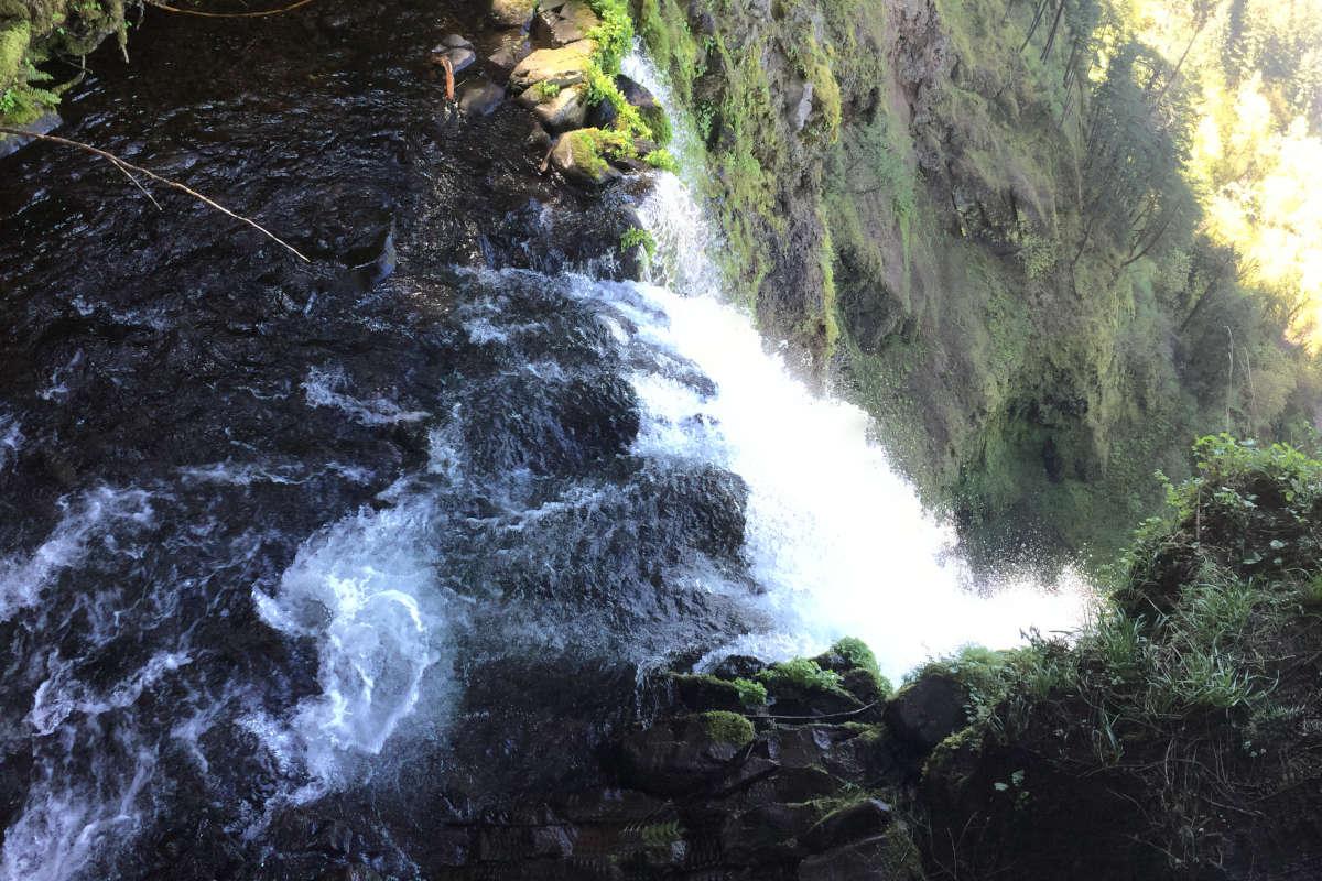 Le point sur les meilleures attractions de l'Oregon