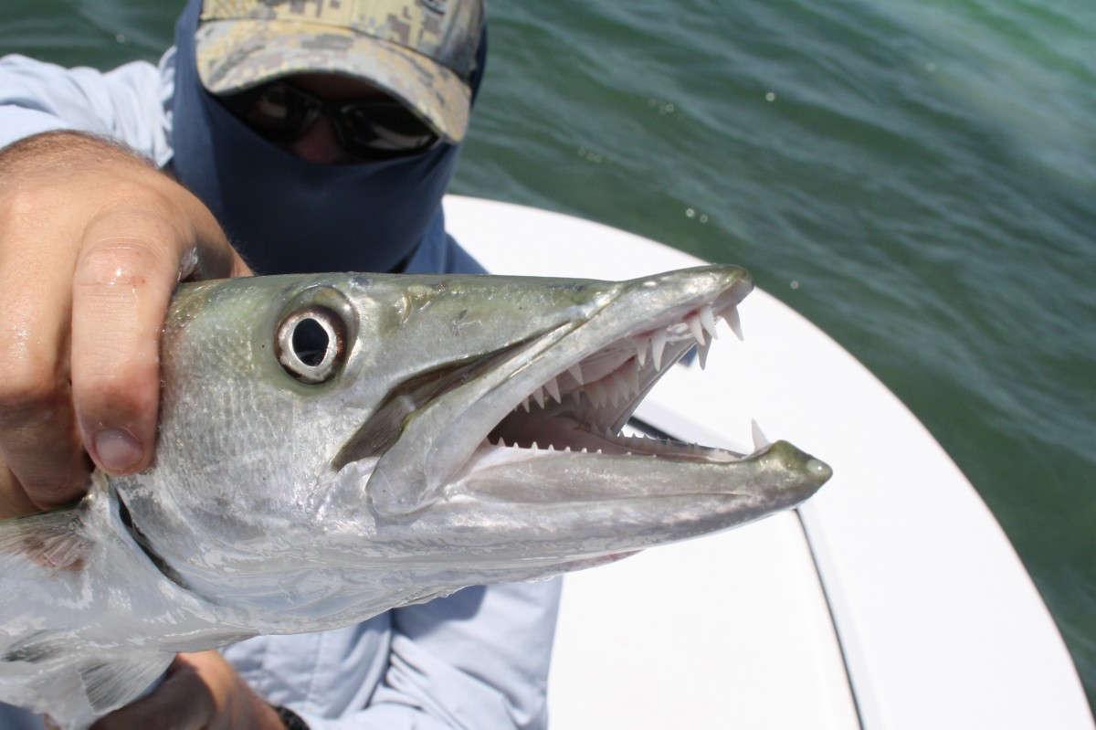 Le point sur les meilleurs spots de pêche aux USA!