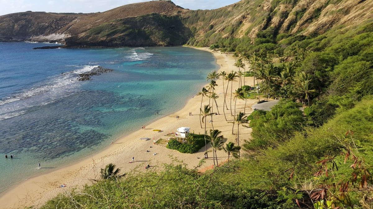 Où bien manger pour pas cher à Honolulu, sur l'île d'Hawaii?